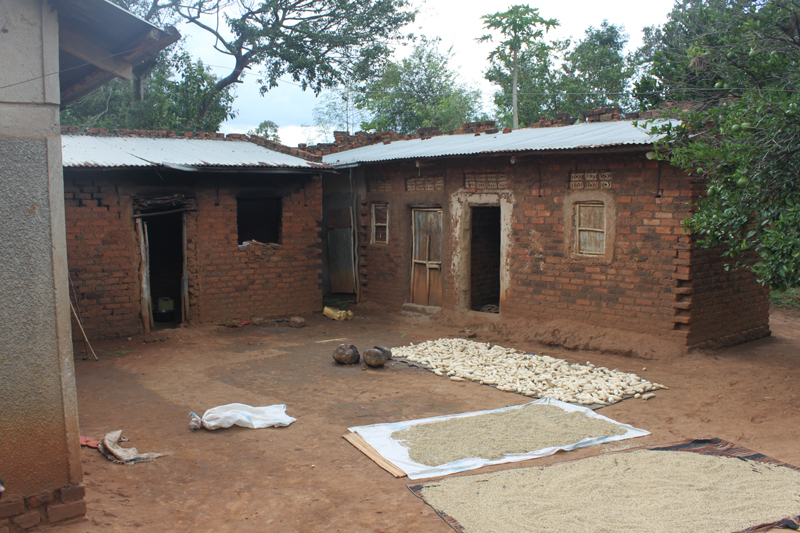 Rural permaculture training and demonstration centre Uganda
