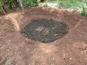 Banana circle + manure