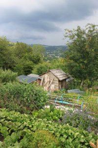 Garth Community Garden