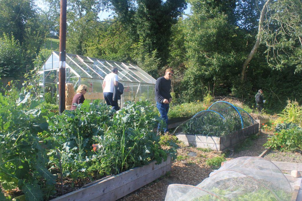 Community garden, Llanfyllin