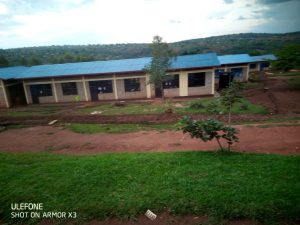 Swales and landscaping at the school