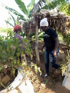 S39 academy of permaculture site visit picture
