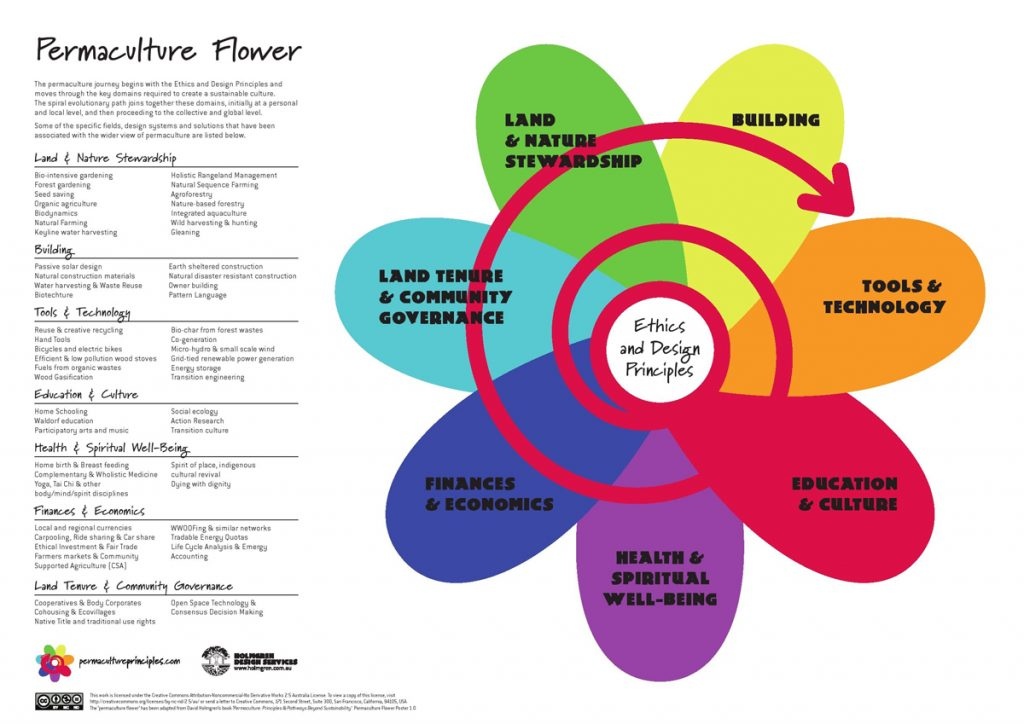 permaculture learning journey