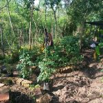 S39 permaculture students in Homa bay at PermoAfrica centre